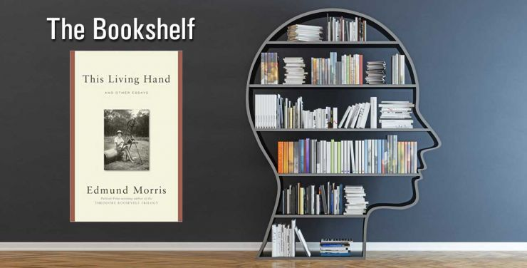 Bookshelf Living Hand Jefferson Essay